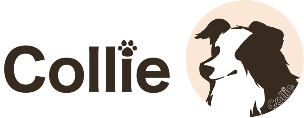 https://itage.co.jp/wp-content/uploads/2020/06/Collie_001.png